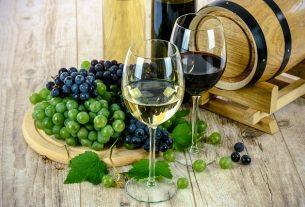 Los mejores consejos para los amantes del vino