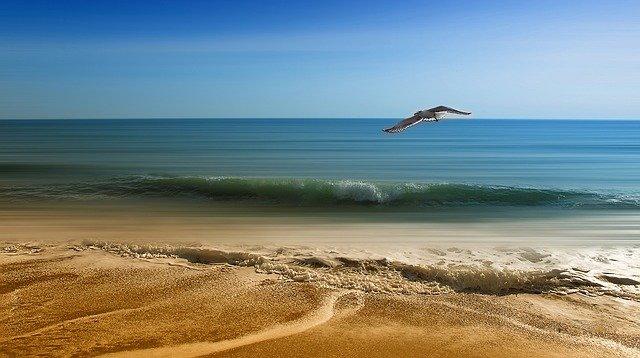 ¡Conoce las bellas playas de Oaxaca!
